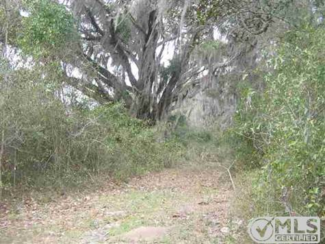 Campo a la venta en/de vacant SW Highway 360, MADISON COUNTY, Florida ,32340  , EUA