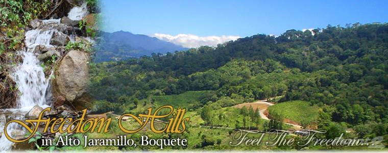 Residencial en venta en/de 22.6 acres in Jaramillo with views, forest and streams – reduced, Jaramillo, Boquete, Panama, Boquete, Chiriquí   , Panamá