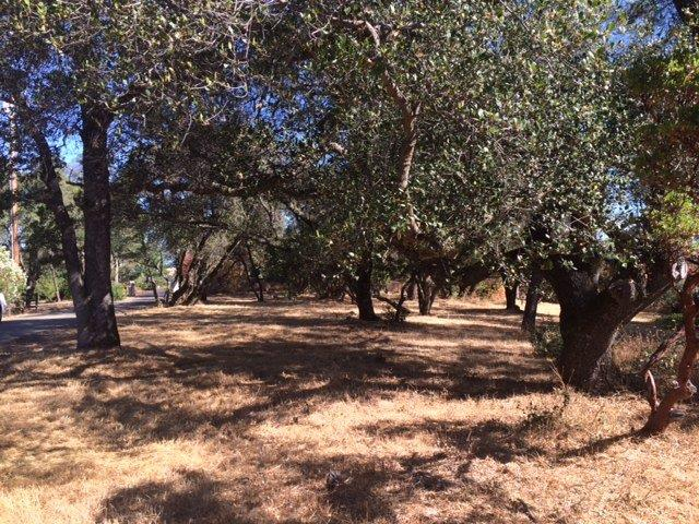 Tierras/terrenos en venta en/de 00 Winton Road, Sutter Creek, California ,95685  , EUA