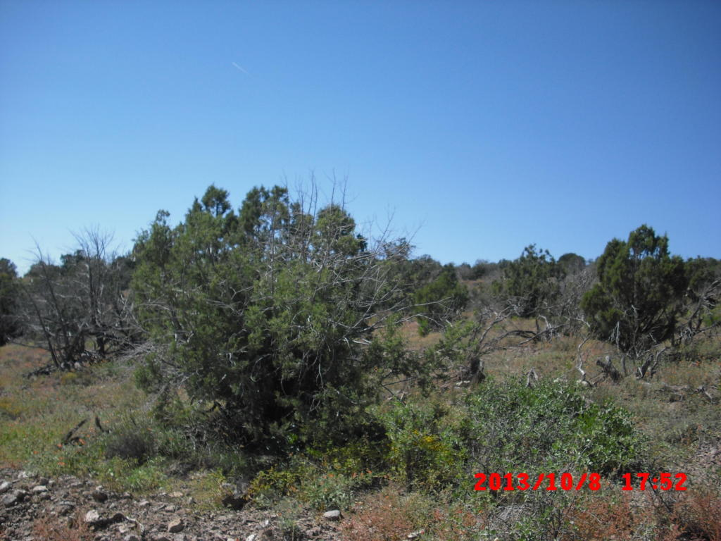 Tierras/terrenos en venta en/de 0 Flycatcher, Chino Valley, Arizona ,86323  , EUA