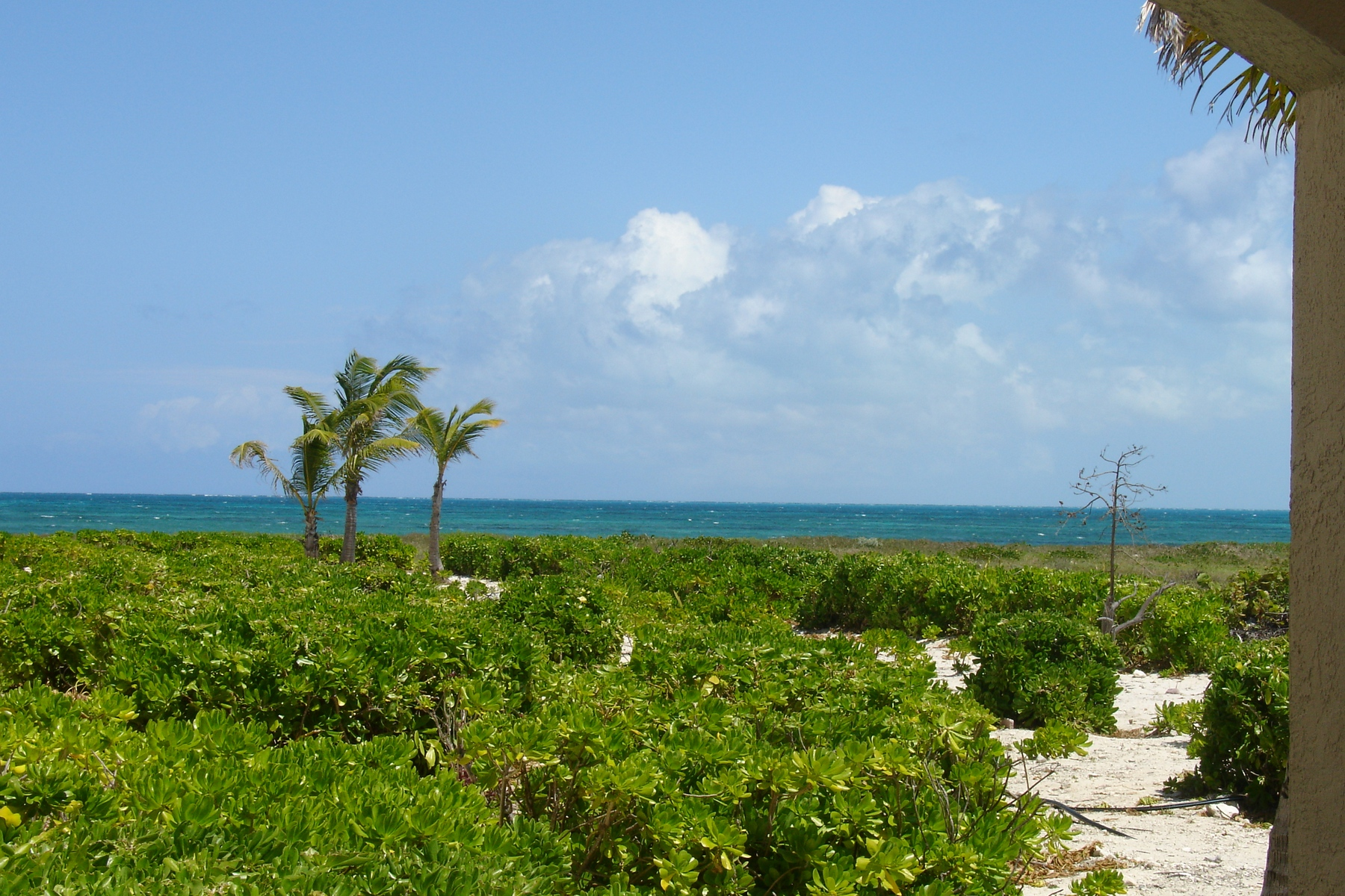 Apartamento en venta en/de Beachfront, North West Point,  ,TCI BWI  , Islas Turcas y Caicos