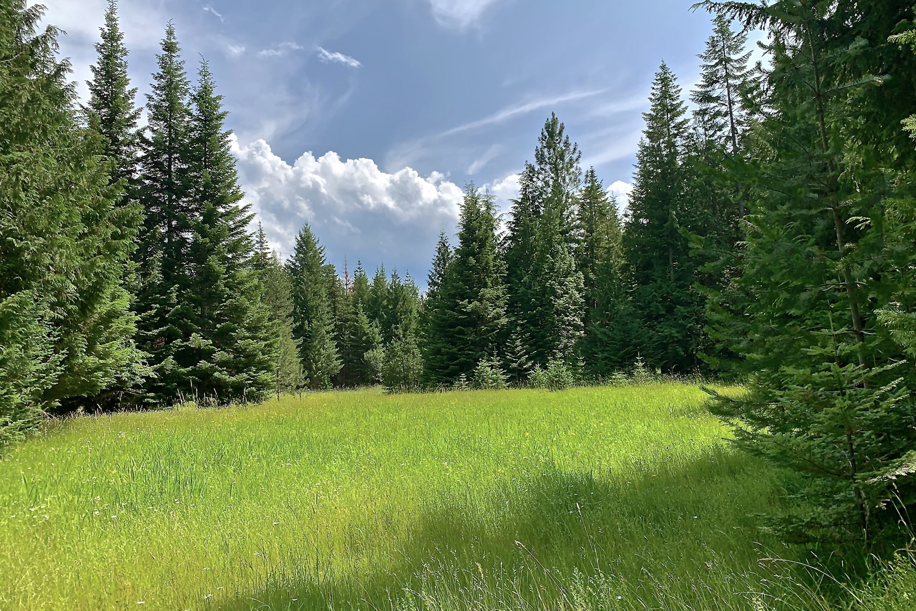 Tierras/terrenos en venta en/de NNA Shadow Valley Lane, Clark Fork, Idaho ,83811  , EUA