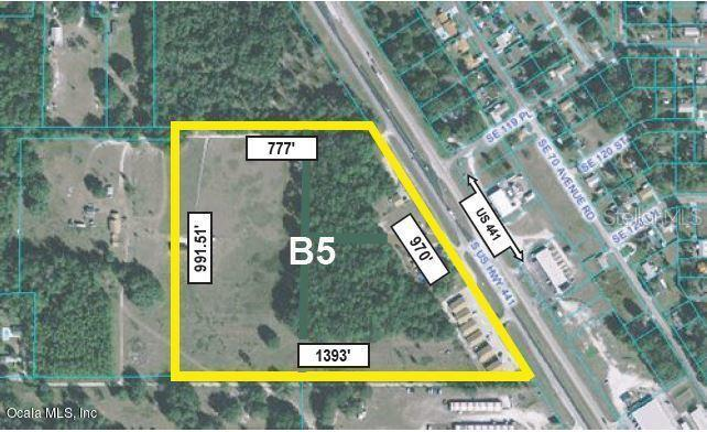 Tierras/terrenos en venta en/de 12110 Highway 441, Belleview, Florida ,34420  , EUA